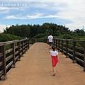 新豐紅樹林遊憩區 (8)