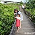 新豐紅樹林遊憩區 (29)