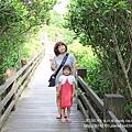 新豐紅樹林遊憩區 (35)