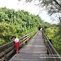 新豐紅樹林遊憩區 (116)