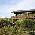 新豐紅樹林遊憩區 (126)