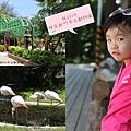 徐妹5Y1M在新竹市立動物園