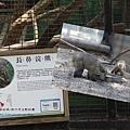 新竹市立動物園遊 (20)
