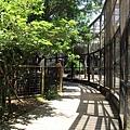 新竹市立動物園遊 (24)