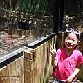 新竹市立動物園遊 (43)