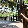 新竹麗池湖畔空軍十一村 (30)