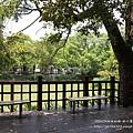 新竹麗池湖畔空軍十一村 (40)