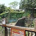 新竹市立動物園遊 (164)
