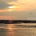 三訪東石漁人碼頭8 (202)