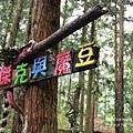 溪頭妖怪村&童話森林 (98).JPG