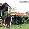 卓蘭花露休閒農場+薑麻園 (97)