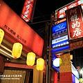 阿龍的店薑母鴨心動公園夜拍 (29).JPG