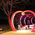 阿龍的店薑母鴨心動公園夜拍 (40).JPG