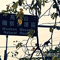 烏山獼猴保護區草山月世界 (69).JPG