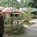 台大竹山實驗林下坪熱帶植物園 (3)