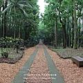 台大竹山實驗林下坪熱帶植物園 (14)