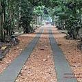 台大竹山實驗林下坪熱帶植物園 (35)