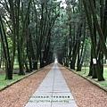 台大竹山實驗林下坪熱帶植物園 (46)