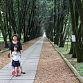 台大竹山實驗林下坪熱帶植物園 (53)