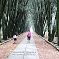 台大竹山實驗林下坪熱帶植物園 (55)