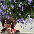 菁芳園~Lily攝001.jpg