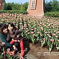 中社花市鬱金香花季 (48)