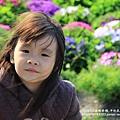 中社花市鬱金香花季 (64)