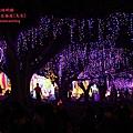 南投2014台灣燈會 (295).JPG