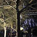 鹽水月津港燈節 (162).JPG