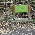藤山園油桐花開 (35).JPG