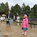 清境星巴克小瑞士花園 (114).JPG
