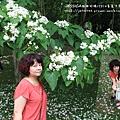 苗栗客家大院桐享喜事 (83).JPG