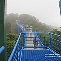 銅鑼腳踏車步道賞桐 (27).JPG