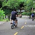 花蓮鯉魚潭紅面番鴨 (60).JPG