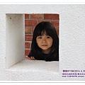 台南鹽水 (3).JPG