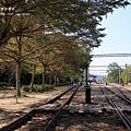 泰安車站 (63).JPG