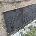 福寶溼地夕色 (63).JPG
