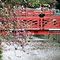 台中綠川~002.JPG
