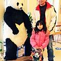 溪州木柵動物園深坑老街一日遊 (32).JPG