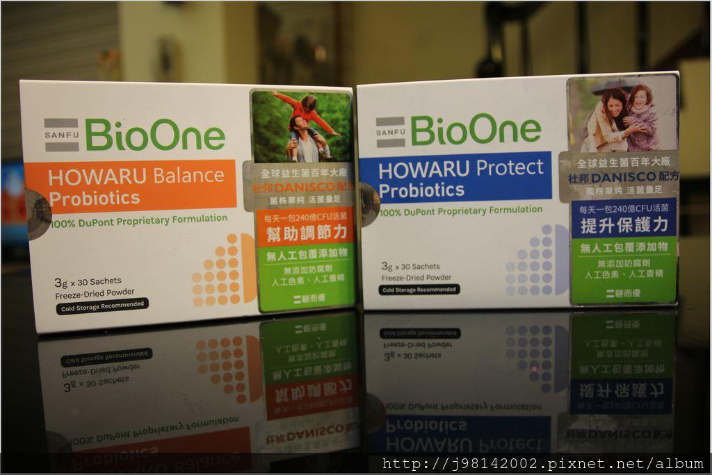 BioOne3.JPG