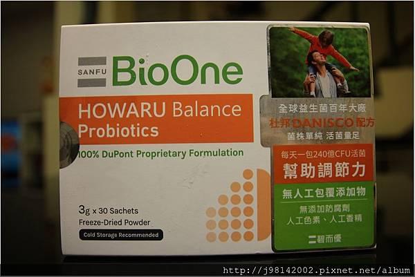 BioOne12.JPG