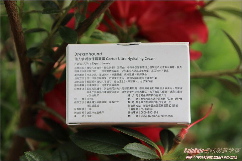 Dreamhound1-2.JPG