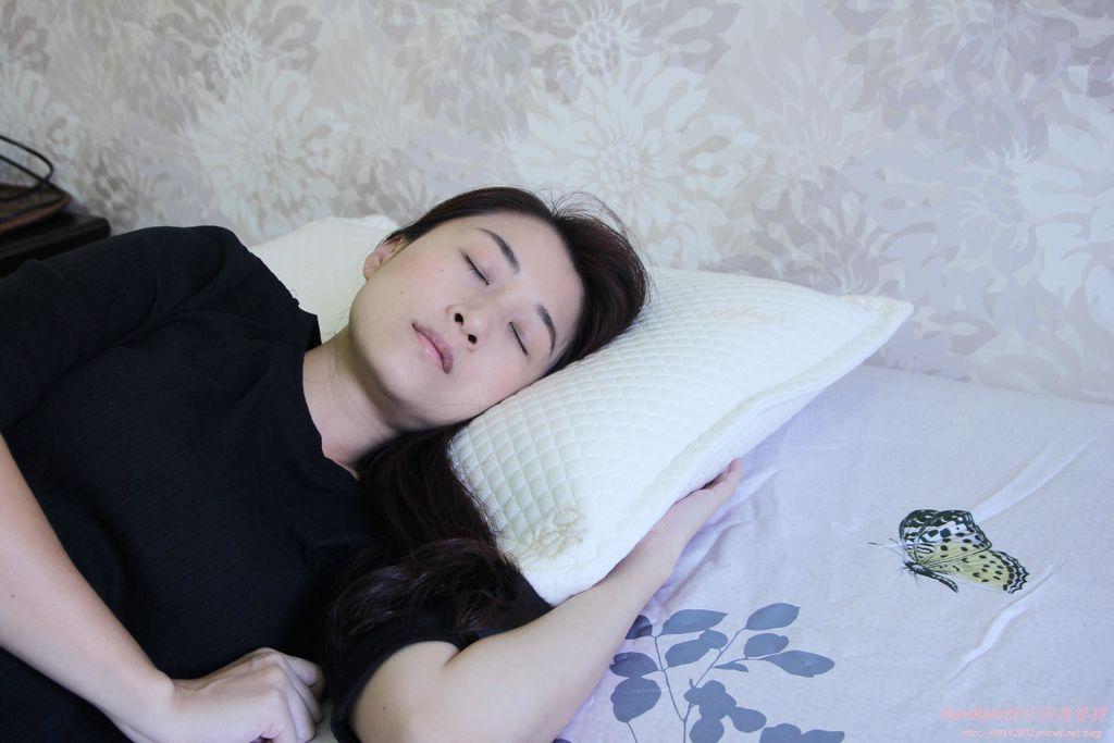 格蕾莎熟眠記形枕15.JPG