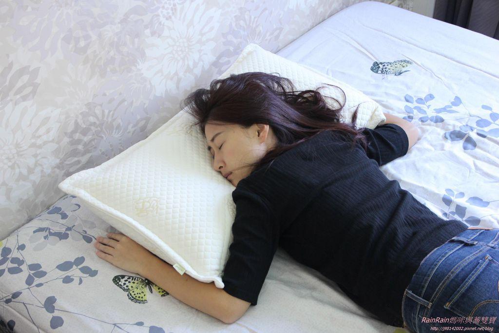 格蕾莎熟眠記形枕23.JPG