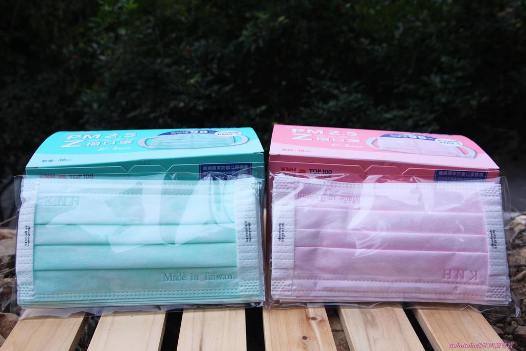 康乃馨PM2.5 Z摺口罩5-1.JPG