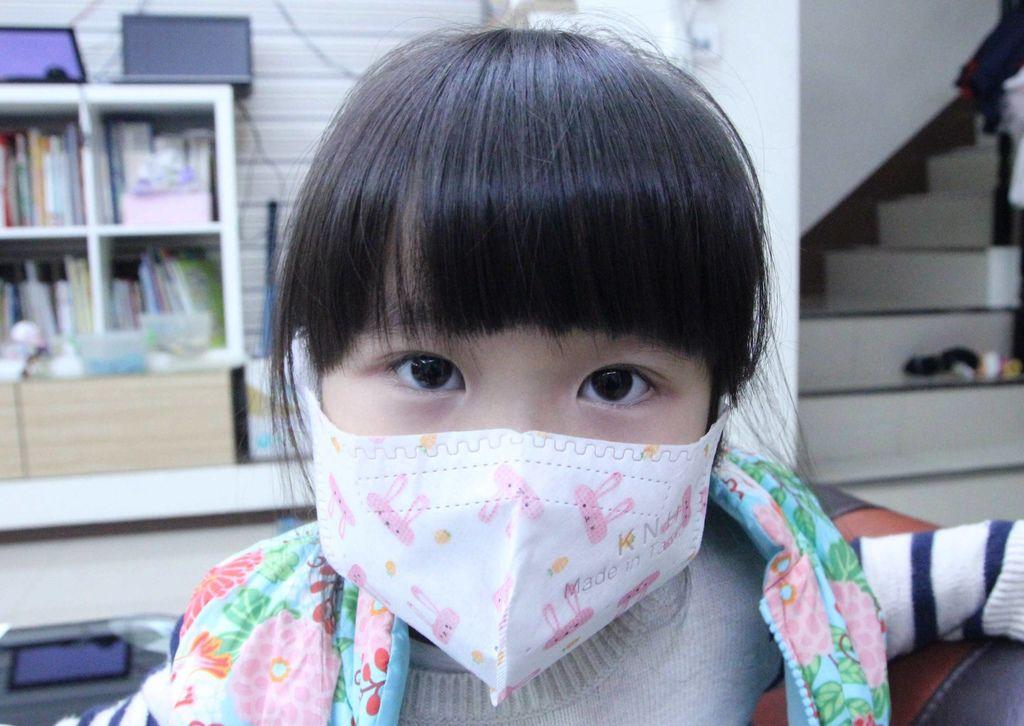 康乃馨PM2.5 Z摺口罩8-1.JPG