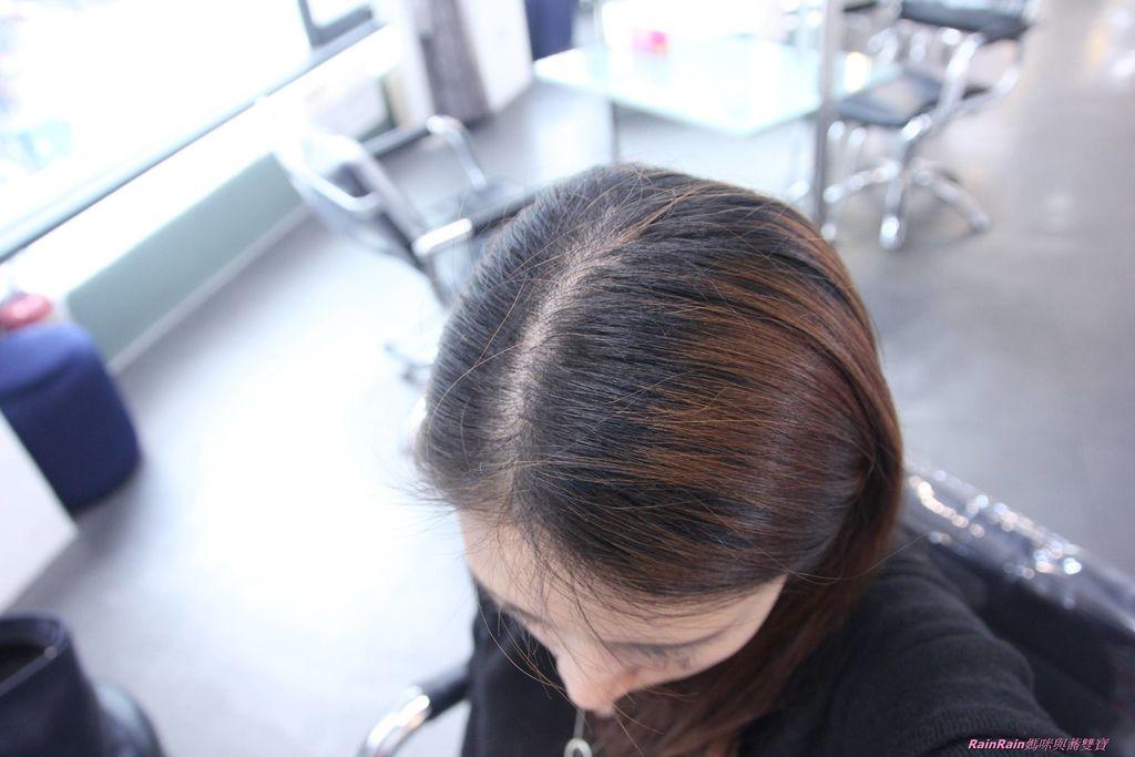 新竹邦尼髮型12.JPG