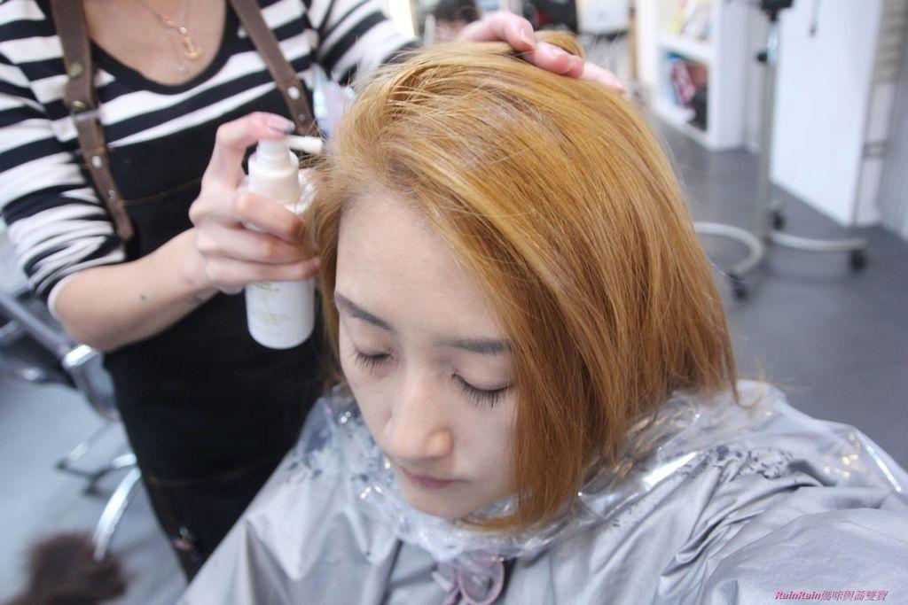 新竹邦尼髮型31.JPG
