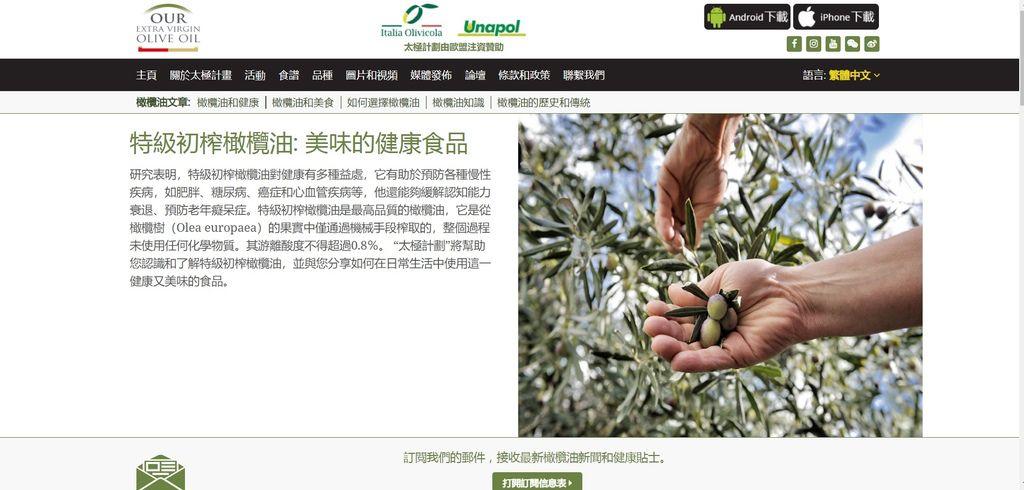 特級初榨橄欖油37.jpg