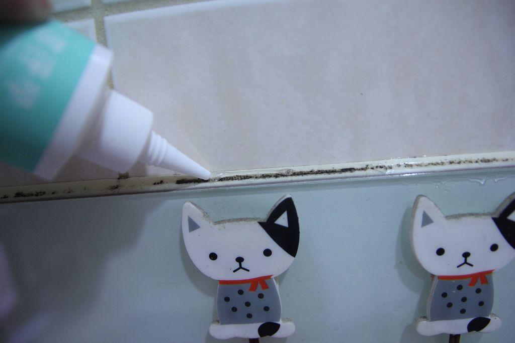 浴室矽利康的除霉清潔6.JPG